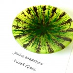 'Woodland Hues' Fused Glass and Enamel bowl by Janice Bradshaw 200mm
